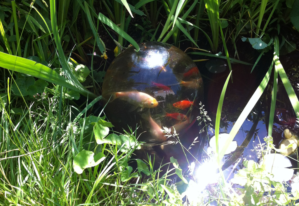 Eine Fischkugel passt in den kleinsten Gartenteich (Foto: Handtuchgarten.de)